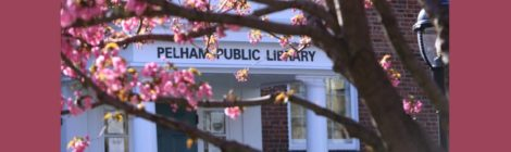 What We Borrowed, Downloaded and Attended:  A Look at Pelham Library Activity in 2017