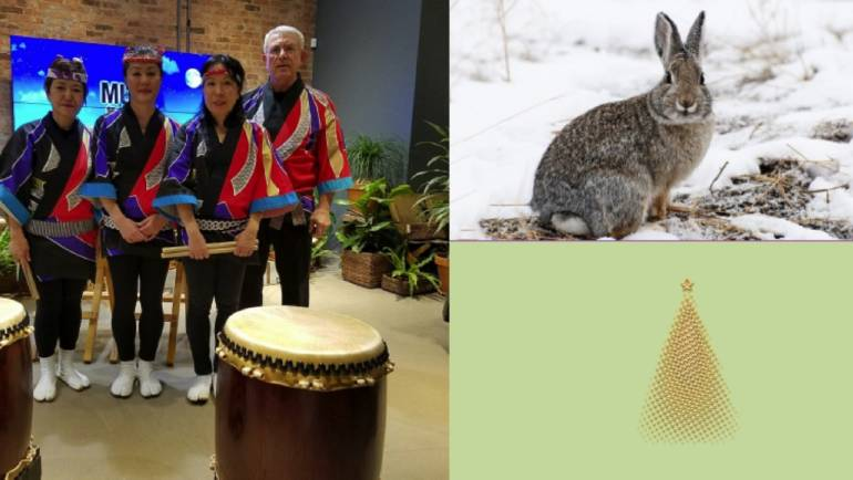 Animals, Drumming, Games and  a Movie … At the Library Over the Holidays!
