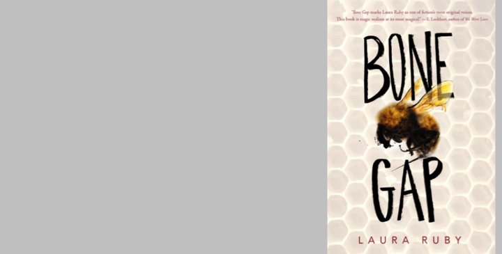 """Young Adult Book Review: """"Bone Gap"""" by Laura Ruby"""